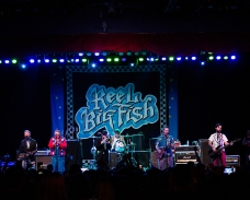 F41A9295 - Reel Big Fish -s